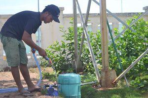 Đảo Bé Lý Sơn: Dân và du khách đều khát