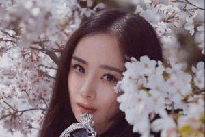 'Từng thiếu niên': Đóng chung với Dương Mịch - Địch Lệ Nhiệt Ba, Đặng Luân sẽ yêu ai?