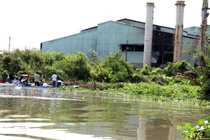 Hậu Giang: Nguyên nhân chính gây ô nhiễm nguồn nước từ xả thải của Nhà máy mía đường, cồn Long Mỹ Phát