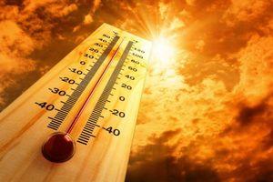 Năm 2019 có thể là năm nóng nhất trong lịch sử nhân loại