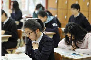 'Mỹ phẩm trí tuệ' - Chức năng thứ tư của đại học