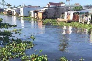 Hậu Giang: Nhà máy đường, cồn Long Mỹ Phát xả thải gây ô nhiễm nguồn nước sông Cái Lớn