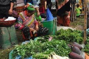 Sự kiện 'Giới thiệu sắc màu văn hóa dân tộc Mông Yên Bái' tại Hà Nội