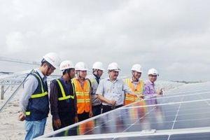 Quảng Trị: Tháo gỡ các vướng mắc để khởi công dự án Nhà máy điện mặt trời