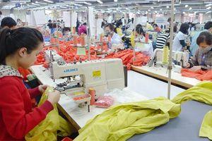 Chuyên gia kinh tế nêu kiến nghị tăng khả năng chống chịu cho doanh nghiệp Việt