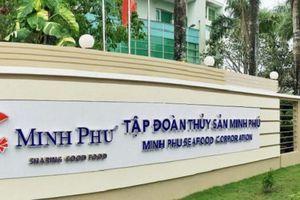 Một loạt cổ đông của Thủy sản Minh Phú đăng ký bán cổ phiếu cho nhà đầu tư chiến lược