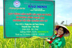 CEO Bảo Minh – Bùi Thị Hạnh Hiếu: Người ấp ủ giấc mơ mang 'hạt ngọc' Việt tỏa sáng trời Tây