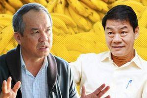 Thaco thành cổ đông lớn trong công ty nông nghiệp của Bầu Đức