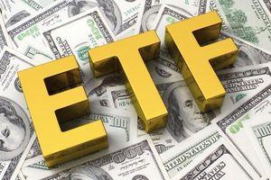 Những 'ứng viên' cổ phiếu có thể được VNM ETF và FTSE ETF thêm vào danh mục
