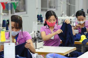 Cuộc chiến thương mại Mỹ - Trung: DN Việt cần phải làm gì?
