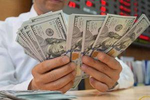 Tỷ giá ngoại tệ 16.5: USD hạ nhiệt sau khi tăng kỉ lục, Euro bật tăng