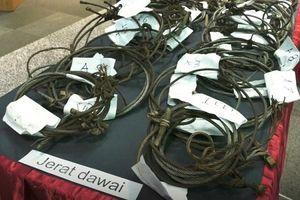 Săn trộm thú ở Malaysia, hai người Việt bị phạt gần 9 tỷ đồng