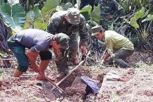 Khởi tố thêm 6 bị can phá rừng tại Vườn Quốc gia Phong Nha - Kẻ Bàng
