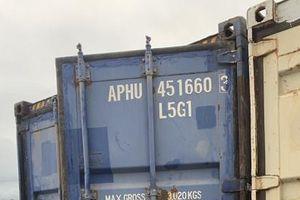 Phát hiện và thu giữ 440 tấn hạt dẻ 'vô chủ' không rõ nguồn gốc