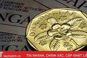 Bí ẩn về đồng xu một đôla may mắn của Singapore