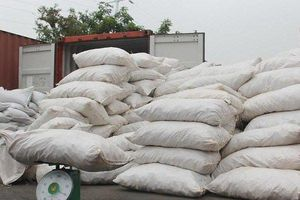 Hải Phòng: Bắt giữ vụ vận chuyển hơn 8 tấn vảy tê tê ngụy trang bao chứa hạt muồng
