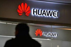 Giáng đòn cấm vận Huawei, Mỹ có thể gánh tổn thất lớn