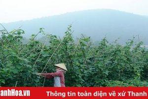 Đảng bộ huyện Hà Trung đẩy mạnh việc học và làm theo Bác