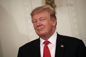 Nhà Trắng tiết lộ thu nhập của Tổng thống Donald Trump năm 2018