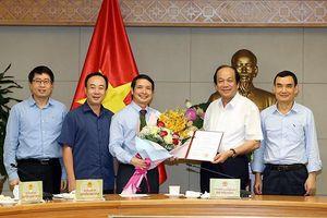 Ông Phạm Thái Hà làm Trợ lý Phó Thủ tướng Vương Đình Huệ