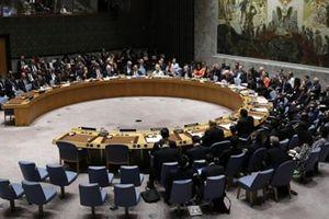 Việt Nam ứng cử thành viên không thường trực Hội đồng Bảo an Liên Hợp quốc