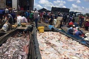 Đồng Nai: Hàng chục tấn cá chết trắng sông La Ngà