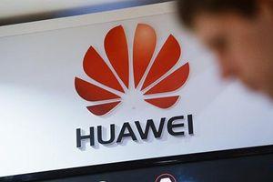 Hoãn đàm phán Mỹ-Trung, Mỹ xem xét ngừng phạt Huawei