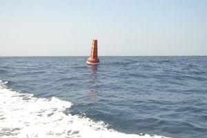 Thả phao phân vùng Khu bảo tồn biển Lý Sơn