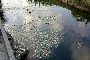 An Dương (Hải Phòng): Kênh thủy lợi 'oằn mình' chịu ô nhiễm
