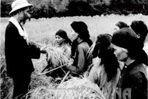 Tấm lòng Bác Hồ với nông dân