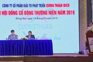 ĐHCĐ Cường Thuận IDICO (CTI): Đặt kế hoạch lợi nhuận gần 142 tỷ đồng, tăng 11%
