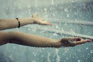 Ký ức mưa