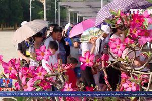 Nhớ mãi công ơn Chủ tịch Hồ Chí Minh