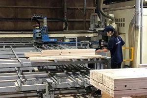 Công nghiệp hỗ trợ ngành chế biến gỗ: Sự quan tâm của Malaysia và Indonesia
