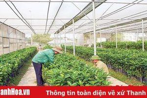 Nâng cao hiệu quả ứng dụng kết quả các nhiệm vụ khoa học và công nghệ trong lĩnh vực nông nghiệp