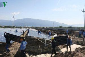 88 nhà máy điện mặt trời sẽ vận hành thương mại trong tháng 6/2019