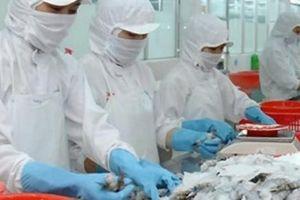 Trung Quốc phá giá đồng nhân dân tệ, ông lớn thủy sản lao đao