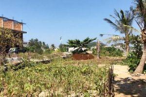 Ngỡ ngàng lý do Huyện ủy Lý Sơn 'giằng co' đất vàng với doanh nghiệp