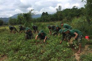 BĐBP tỉnh Quảng Trị: Sôi nổi các hoạt động của tuổi trẻ làm theo lời Bác