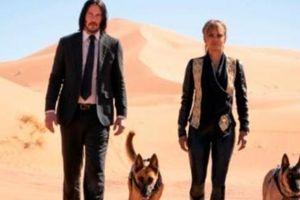 Avengers: Endgame nhường vị trí số một cho John Wick 3 tại phòng vé Bắc Mỹ