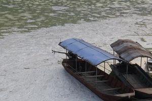 Nước hồ Vai Miếu đổi màu bất thường, bốc mùi hôi thối