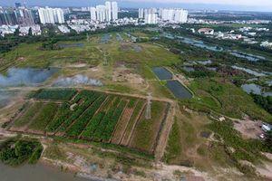 Trục lợi, bỏ hoang phí đất công
