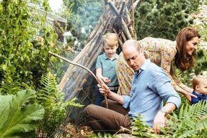 Người thừa kế ngai vàng Anh khéo khoe con trong bộ ảnh gia đình vui vẻ