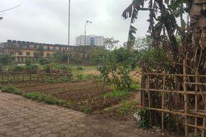 Lập dự án xây trường rồi bỏ đất trống