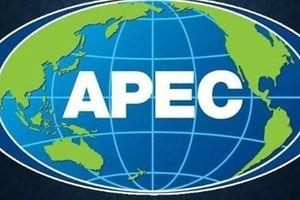Các nền kinh tế khu vực APEC cam kết ủng hộ tự do thương mại