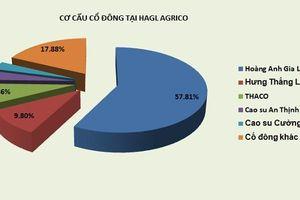Sau THACO, một giao dịch 37 triệu cổ phiếu HAGL Agrico được sang tay