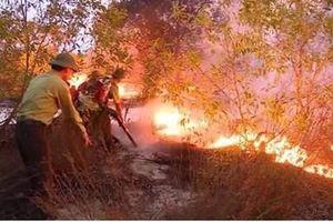 Nắng nóng đỉnh điểm, 'bà hỏa' thiêu trụi 15ha rừng phòng hộ ở Quảng Bình