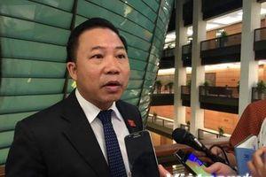 Đại biểu Quốc hội nói gì vụ Tổng giám đốc Nhật Cường bỏ trốn?