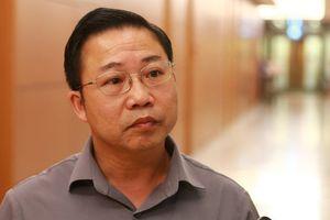 ĐBQH Lưu Bình Nhưỡng: Ông chủ Nhật Cường trốn không phải ngẫu nhiên