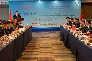 Xúc tiến thương mại nông sản Việt tại Trung Quốc